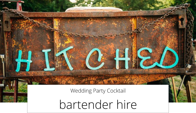 Wedding Party Cocktail  bartender hire
